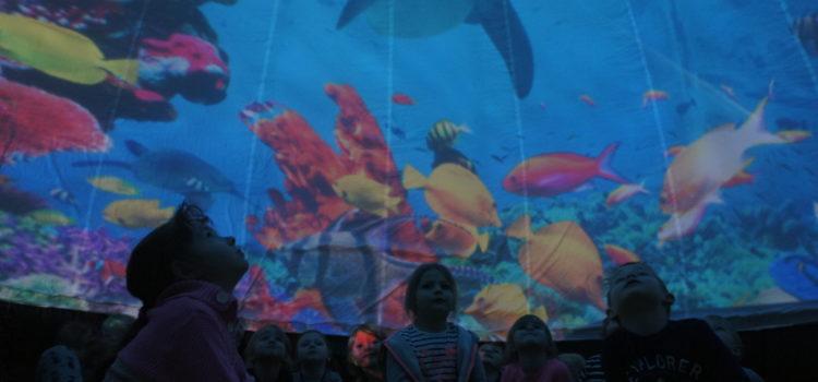 Zajęcia w wirtualnym oceanarium